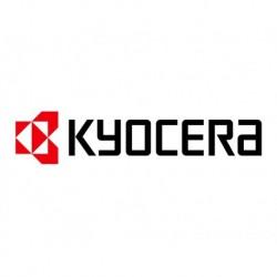 KYOCERA Toner copieur analogique TK-DC162Z Noir 15 000 pages