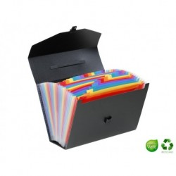 VIQUEL Valisette trieur Rainbow class®
